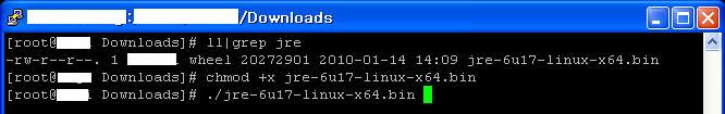 Java installation step 3: installing JRE