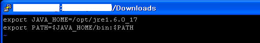 Java installation step 5: content of java.sh file