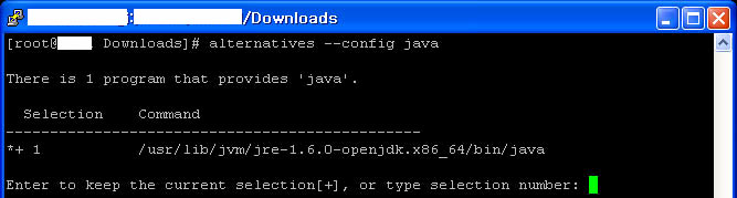 Java installation step 6: checking java alternatives