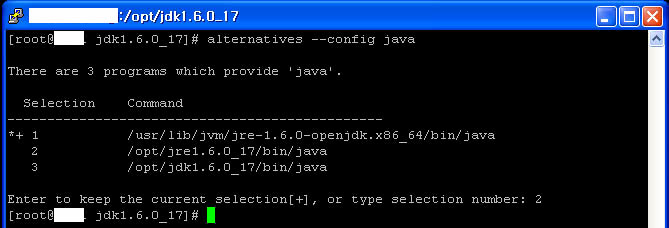 Java installation step 6: configuring java program through alternatives