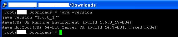 Java installation step 7: verifying java version