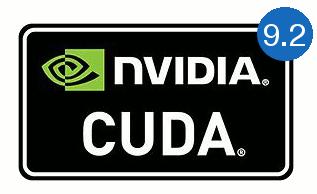 install both cuda 9 and 10